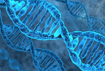 菌のDNAイメージ